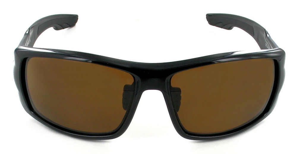 Evolution-Riva-polarised-Front