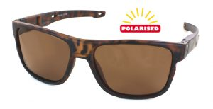 Evolution Slide Tortoise Polarised