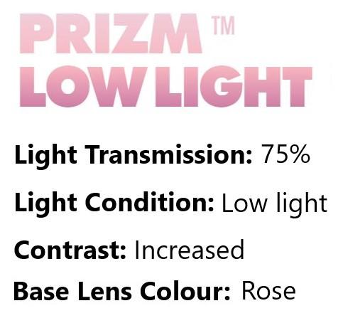 Oakley prizm low light lens