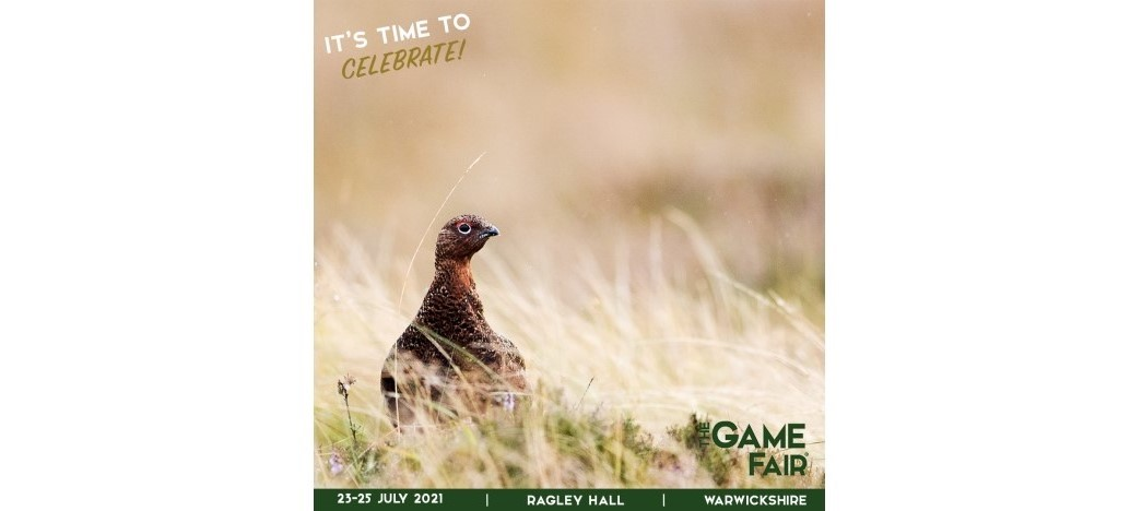 Come and see us at The Game Fair